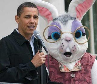 Obamabunny